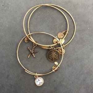 Alex + Ani Set of 3 Bracelets